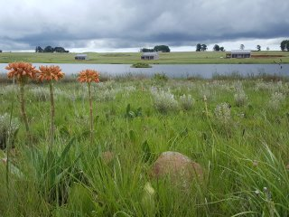 Blue Crane Farm - Unit 2, Dullstroom