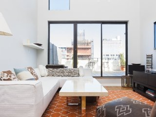 Bright 1 Bedroom Williamsburg Penthouse with Large Patio