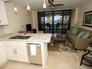 Sea Coral 2 BR at Sapphire Beach Resort