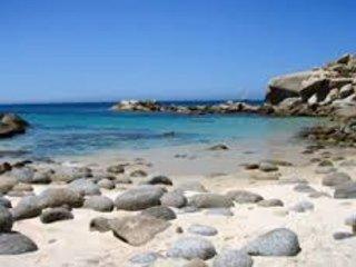 Cabo Pulmo , Baja Mexico Just Steps to the Beach