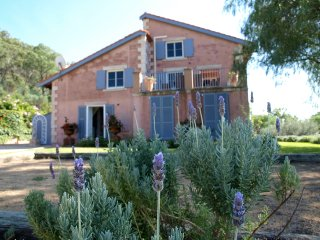 Talits Estate Vineyard