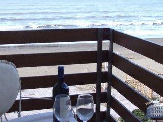Apartment in Tuscany : Tuscany Coast Area Marea Lato, Marina di Castagneto Carducci