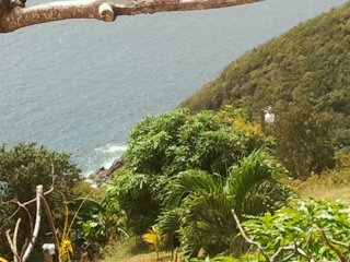 Fortuna Carambolas Charlotte Amalie  - Room 1B