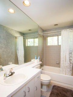 Bathroom 3 (main level)