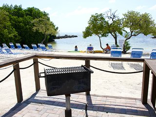 2 x ISLAND VIEW 2BR/2BA SUITES FOR 12, FULL KITCHEN, PRIVATE BEACH, GRILL, POOL
