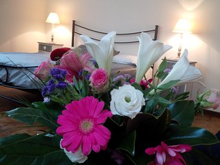 Pink Oleander Apartment 2