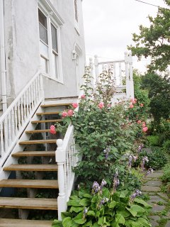 Year Long Flowering Garden to greet you