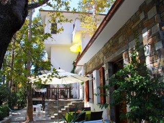 Platanofylla Apartments No.4