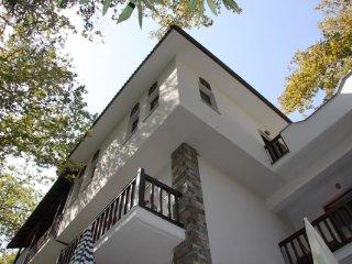 Platanofylla Apartments Pelion