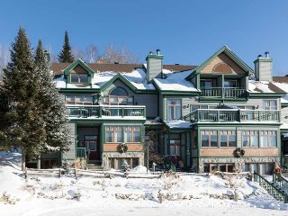Ski in/out, Prime Location, 4 min Walk to the Village (215475)