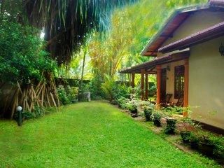 Gecko villa guest house