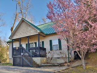 Semi-Private Resort With Pool, Deck, Gas Grill, 2 Bedrooms, Sleeps 9, Games, Pigeon Forge