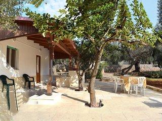 Casa vacanze immersa negli ulivi