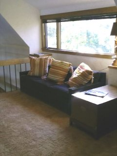 LOFT area with Queen Sofa Bed