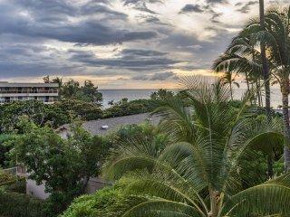 Great ocean view, Comfortable furnishing, upgraded, Kihei