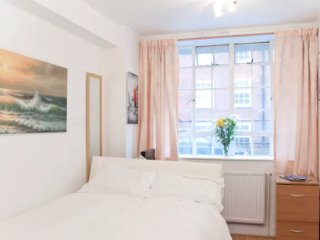 Cosy studio in the heart of Chelsea!