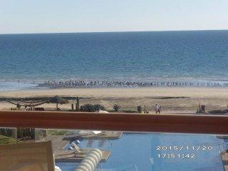 Encanto Living, Unit 303, 1 Bedroom, 2 Bath, Ocean Front Condo 1381 SF, WiFi, Puerto Penasco