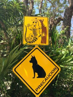 Just one of my favorite street signs. We love all of our animals.
