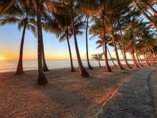 CORAL SHORES, PALM COVE - Large 1 b/r ground floor beach unit, Palm Cove