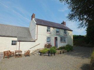Ffynnondici Farmhouse (2108), Pontfaen