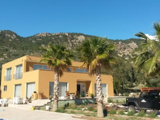 Guesthouse Camelion, Gelemis
