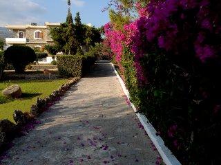 Sitia apartments next to the pool
