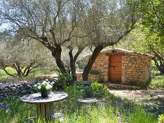 Cabanon provençal au milieu des oliviers, calme, nature et confort, très rare !!