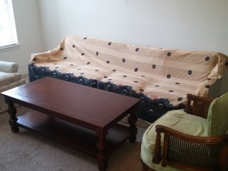 EnjoyStay in Livingroom +Couch+ Complimentary Breakfast & Indian Dinner -Orlando, Union Park