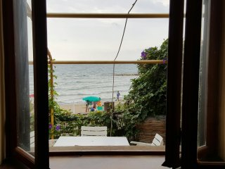 wonderful flat on the beach with garden near Rome !