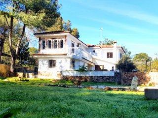 Villa Jaras, Las Jaras