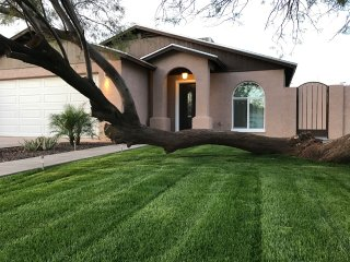 Completely Remodeled Home in Downtown Phoenix