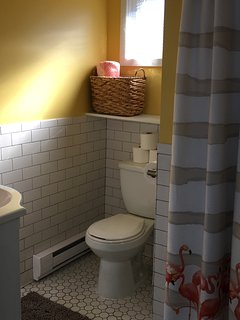 Tiled bathroom equipped with hair dryer, iron/ironing board, paper products, soaps and cleansers.