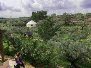 Yurta Mongola Delta del Ebro