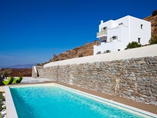 See Naxos Boutique Villa shared pool/shower rain