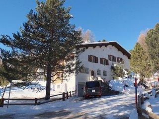 Las Plauntas – St. Moritz