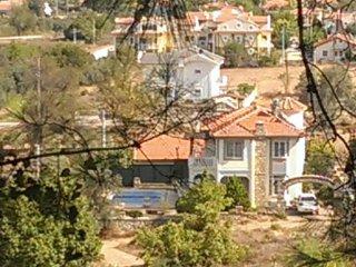 Fig Tree Villa, Uzumlu