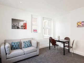 Bright and Modern Central London Apartment (WR1)