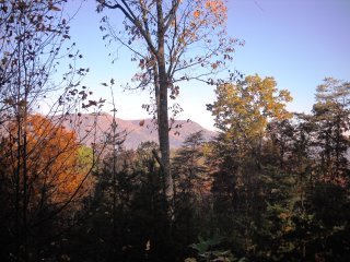 Another fall view from back porch of Day Dreamer (tree has been removed to improve the view)