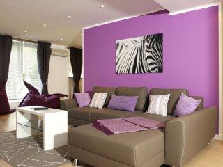 LLAG Luxury Vacation Apartment in Munich - 1722 sqft, hotel service, great, Eichenau b Muenchen