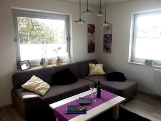 Vacation Apartment in Rammelsbach - 700 sqft, playset, grill (# 2431)
