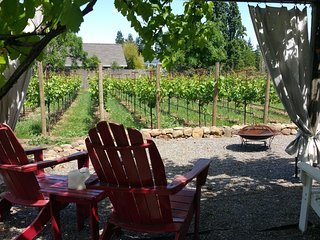 FreeNite~Casa Vina~Vineyard Farmhouse~FirePit,Bikes,Donkey,Wine,Robes,NearPlza