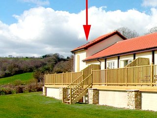 STARGAZER, pet friendly, country holiday cottage, with a garden in Upottery, Honiton, Ref 2214