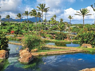 New Years Week 12/28/2017 to 1/4/2018 in Kauai -Confirmed Ocean View