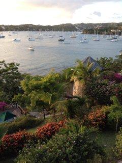 Enjoy walkways through the estate's lush, tropical gardens.