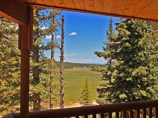 View from the living room window.