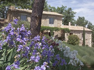 Villa Bouquet holiday vacation large villa rental france, provence, southern fra