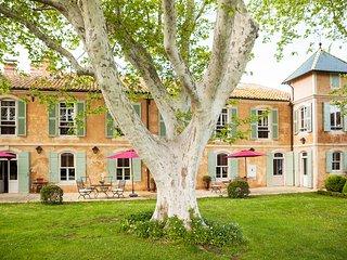 Splendid private Provencal Mas, Arles