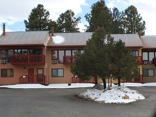 Lakeview Condo, in Pagosa Springs is awaiting your arrival.
