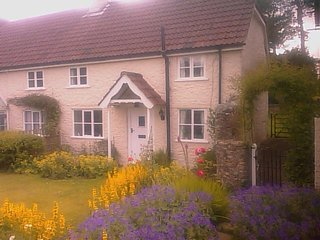 A Pretty Semi-Detached Cottage situated in the East Devon Village of Dalwood