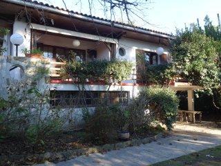 Grande maison familiale au centre du Cap Ferret